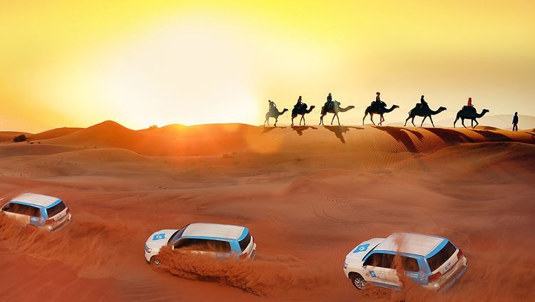 0014512_tour-dubai-desert-safari-tham-quan-sa-mac-dubai-buoi-chieu-tour-ghep