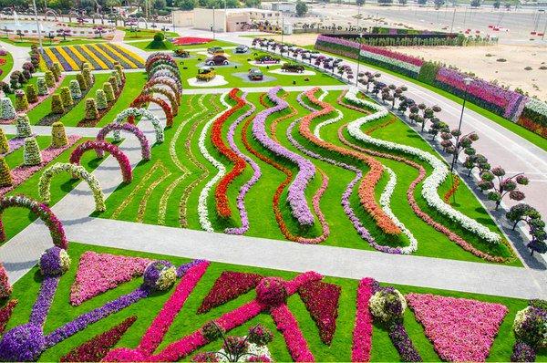the-worlds-biggest-natural-flower-garden-02-344636-1368239891_600x0